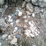 Фотография клада монет дирхемов