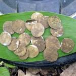 Клад монет дирхем