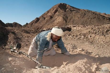 Золотая лихорадка в пустыне