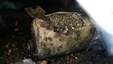 Один из жителей Башкирии нашел огромный клад советских монет