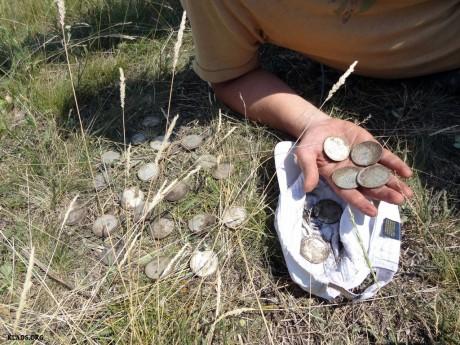 Клад серебряных рублей стоимостью 50000$