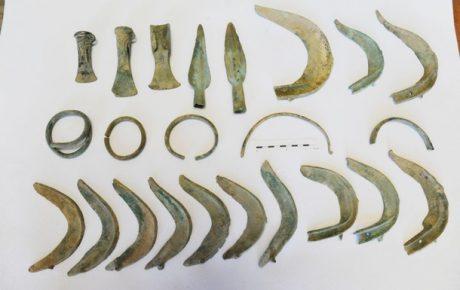 В чешской деревне собака откопала бронзовый клад