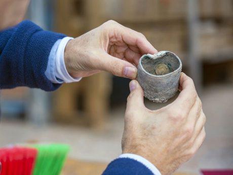 В Кейсарии нашли клад золотых монет